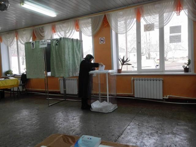 Кочетовка, избиратель голосует