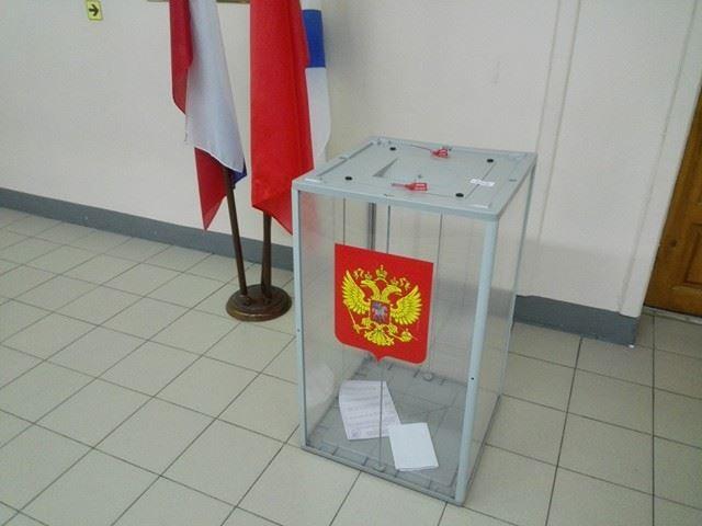 Стационарная урна для голосования, Владимир Егоров